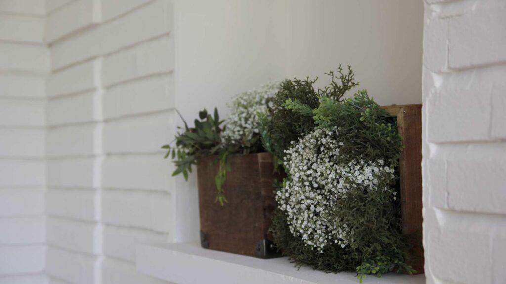 decoracion-oiginal-con-plantas